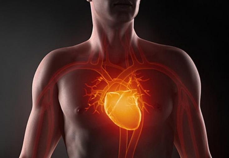 Продукты богатые калием и магнием для сердца