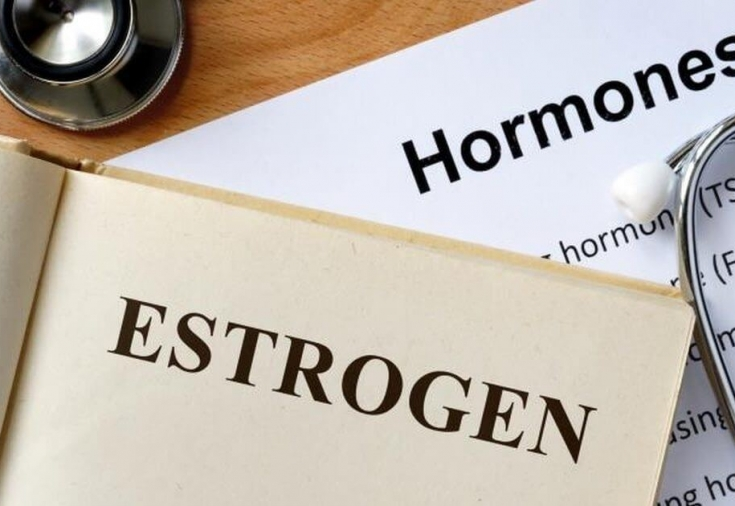 Эстрогены в продуктах: в каких травах он содержится для повышения гормона у женщин и их список в таблице или как его понизить