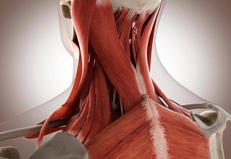 лечение головных болей иглоукалыванием