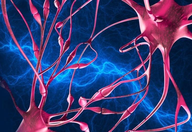 Как укрепить нервную систему человека