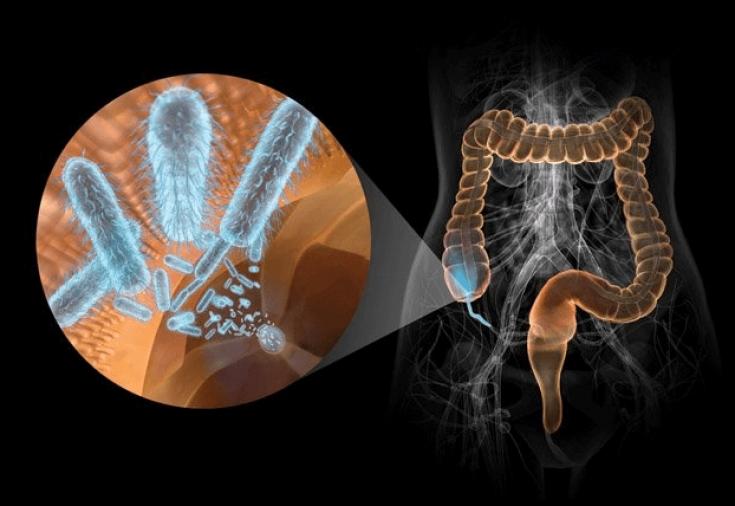 Сколько организм восстанавливается после антибиотиков