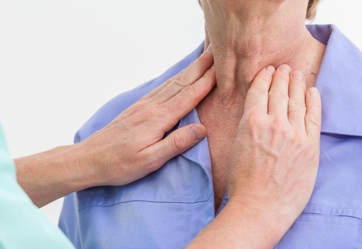 В чем заключается функция щитовидной железы