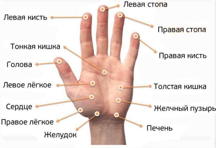 Как делать массаж пальцев рук