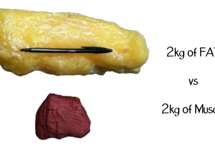 убрать жир нарастить мышечную массу