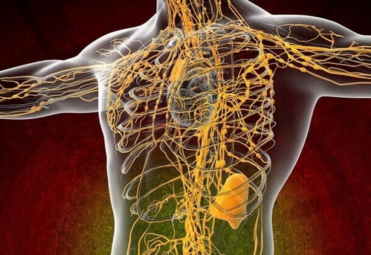 Этот простой метод активизирует работу лимфатической системы.
