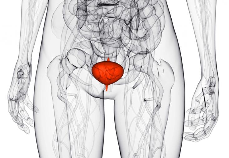 Как цистит влияет на гинекологию
