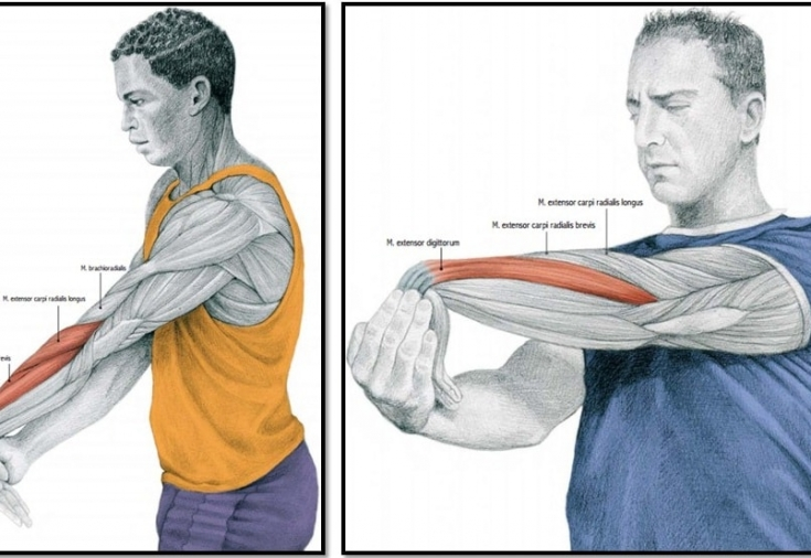Лечебная гимнастика при боли в кисти рук