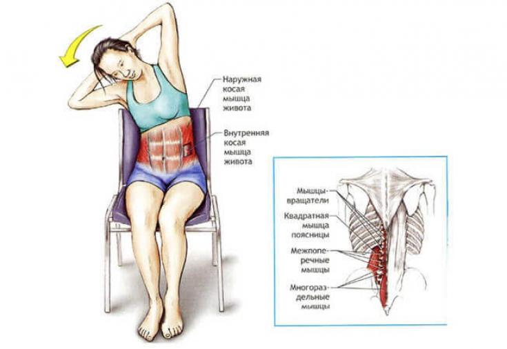 Упражнения для укрепления поясницы - мышц спины поясничного отдела