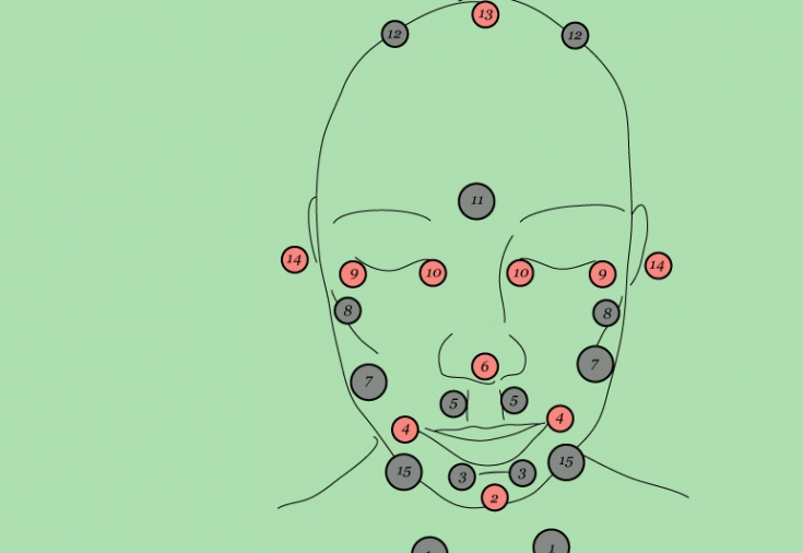 Точки на лице отвечающие за органы активная стимуляция
