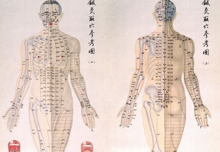 банк биологически активные точки на теле человека фото с описанием всего это одни