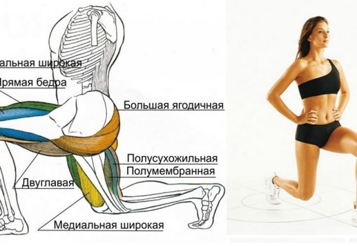 как похудеть в ногах фото