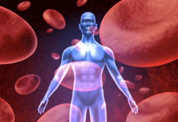 Как разжижают густую кровь народными средствами? Продукты, разжижающие кровь. Препараты