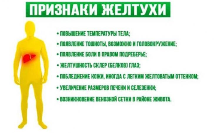 признаки желтухи