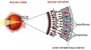 klinicheskie-priznaki-i-simptomy-ukazyvayushchie-na-gemeralopiyu