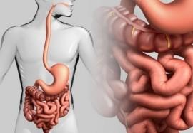 5 эффективных методов очищения кишечника в домашних условиях
