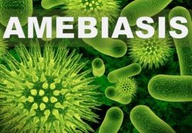 Амебиаз: современные принципы диагностики и лечения заболевания