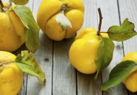 Айва – осенний источник витаминов: разбираем вкусные рецепты