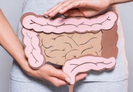 Бактерии кишечника человека: почему мы толстеем и как похудеть