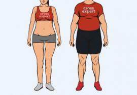 Эндоморф – как определить данный тип телосложения