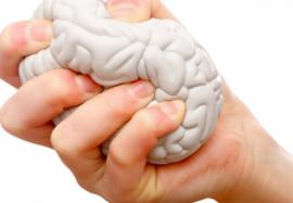 Гормоны стресса: жизнь «под прессом»