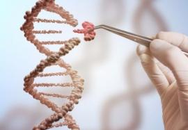Как лечит и увеличивает срок жизни биохакинг