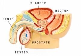 Коррекция пениса в кишиневе