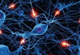 Невротические расстройства: как поставить нервы по струнке