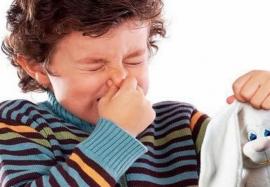 Как вредные игрушки влияют на вашего ребенка