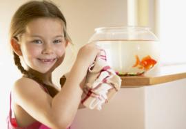 Оптимальная влажность воздуха для ребенка в квартире: почему она важна для здоровья