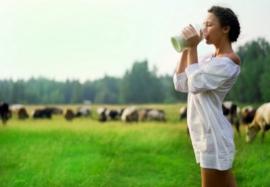 Полезно ли молоко — вся правда о напитке