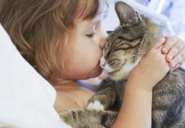 Стригущий лишай у детей: симптомы и лечение
