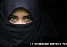 Взгляд в зеркало души: 38 интересных фактов о глазах